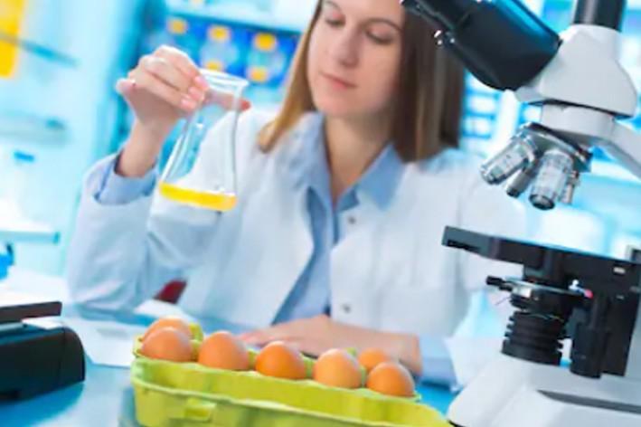Analise de alimentos proteínas