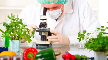 Análise de contaminantes em alimentos