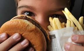 Analise de gordura em alimentos