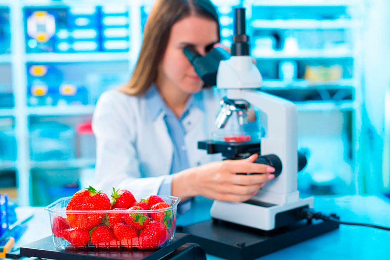 Análise microscópica de alimentos