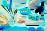 Análise de produtos alimentícios