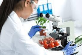 Analise de tabela nutricional