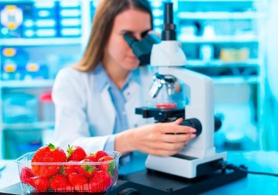 Empresa de analise de alimentos