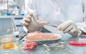 Laboratório para análise de alimentos