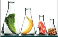 Análise microbiológica de alimentos