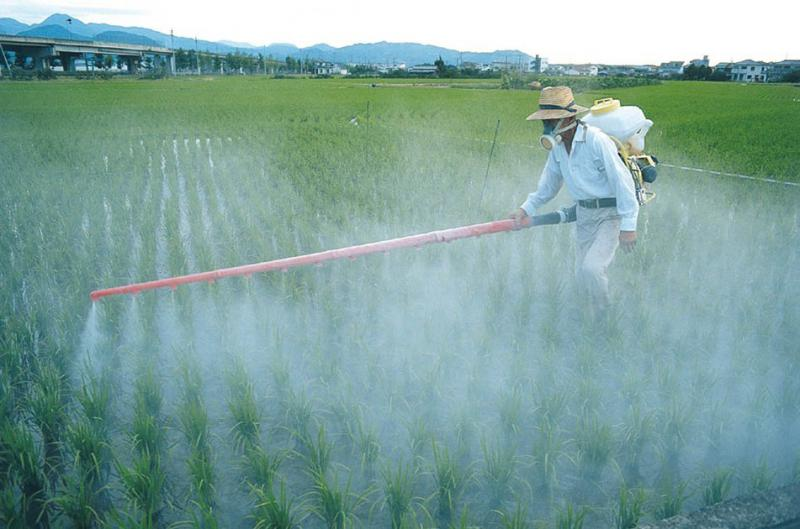 Analise de resíduos de pesticidas